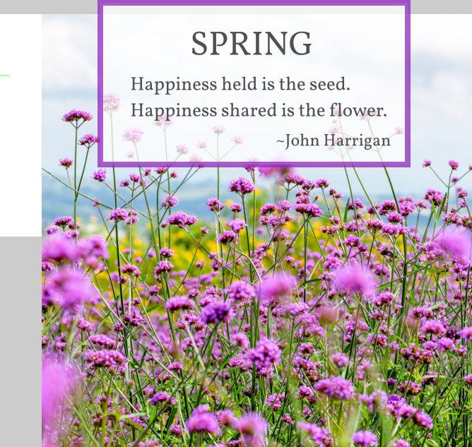 Spring Down Under